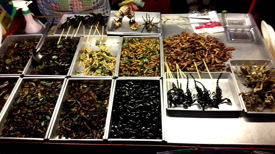Bangkok insects food