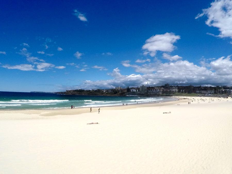 Bondy beach Sydney Australia